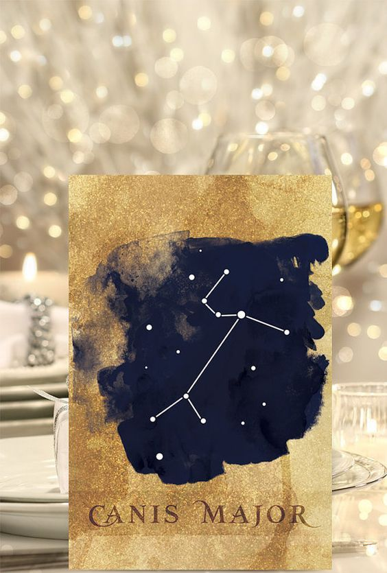 chic gold glitter and navu constellation table names