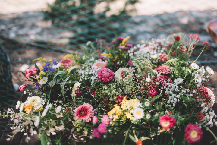 Aren't these flowers gorgeous for decorating a boho wedding
