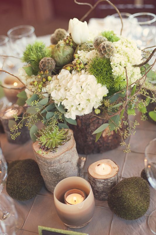 tree stumps and branches repurposed into planters, vases and candle holders - such a creative idea