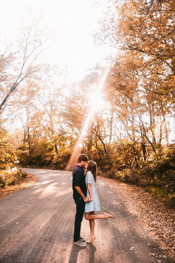 an amazing picture in a fall sunlight forest is very romantic