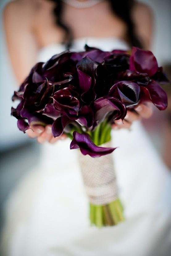 deep purple calla lilies are a timeless idea for any kind of wedding
