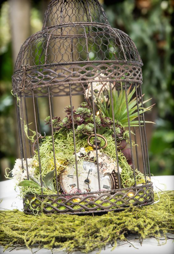 a vintage cage with moss, succulents and a vintage pocket watch inside for a steampunk wedding
