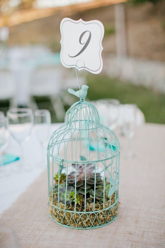 a blue cage with moss, succulents and a table number on top for trendy decor