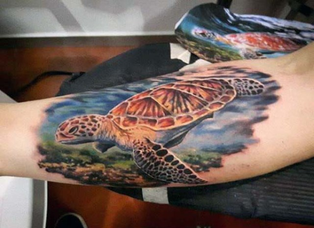 Floating turtle tattoo on the arm
