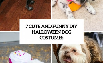 7 funny and cute diy halloween dog costumes cover