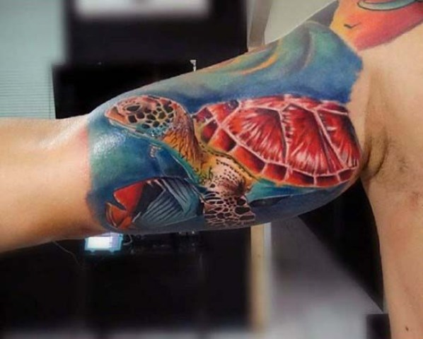 Turtle with red shell tattoo on the biceps