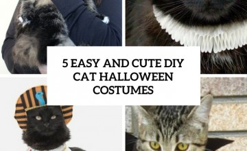 5 easy and cute diy cat halloween costumes cover