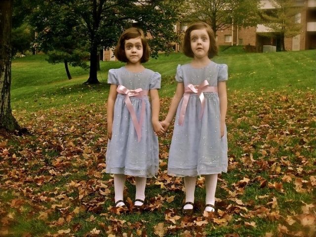 Twin girls costumes inspired by Shining movie