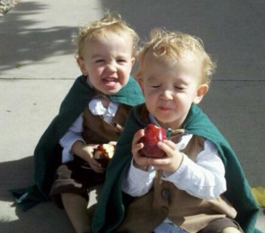 Frodo and Sam costumes