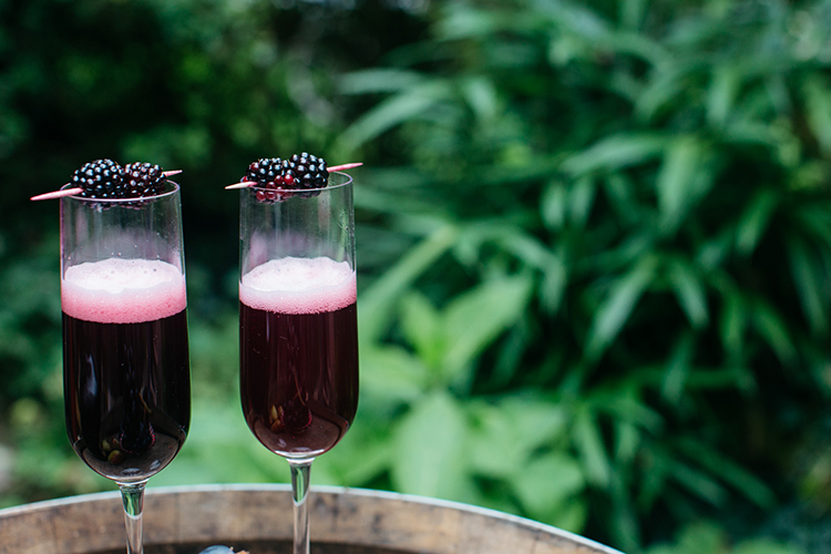 blackberry cocktails - https://ruffledblog.com/woodland-luxe-wedding-inspiration-with-fall-colors