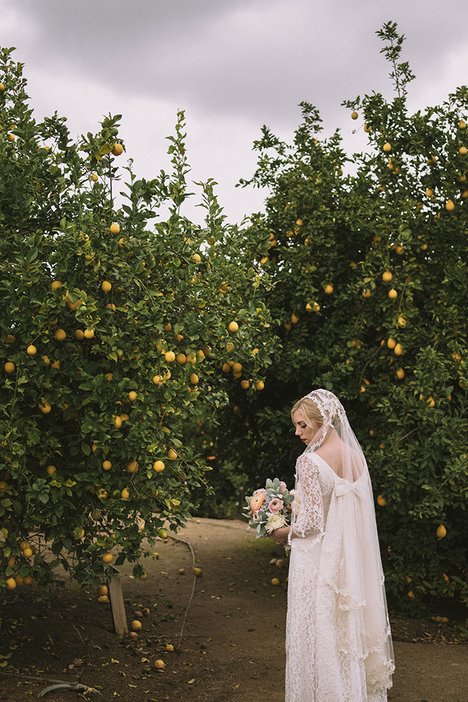 This wedding isn't your usual citrus wedding with a crazy color scheme, it's an elegant vintage wedding in California