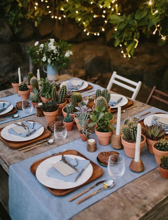 lots of cacti and succulents planted in pots for a cool boho or desert wedding