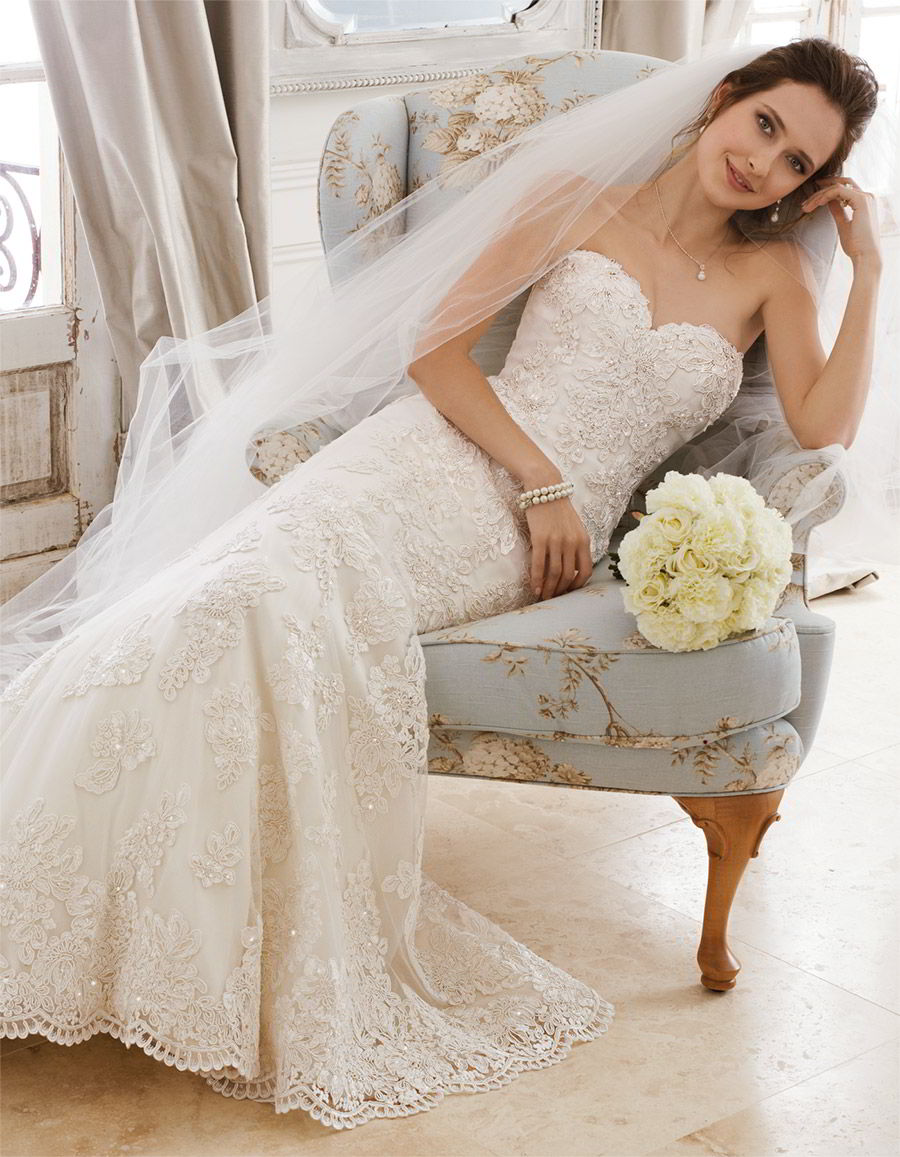 sophia tolli spring 2018 mon cheri bridals strapless sweetheart beaded lace fit flare wedding dress (y11870 alexia) mv corset back court train romantic