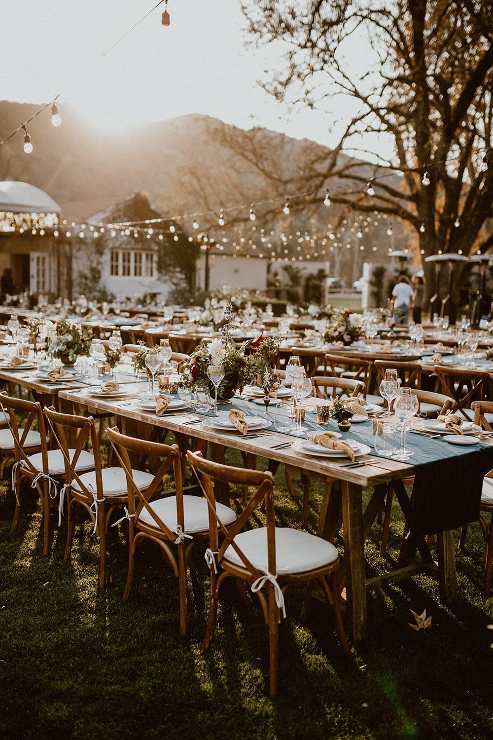 vineyard outdoor wedding reception