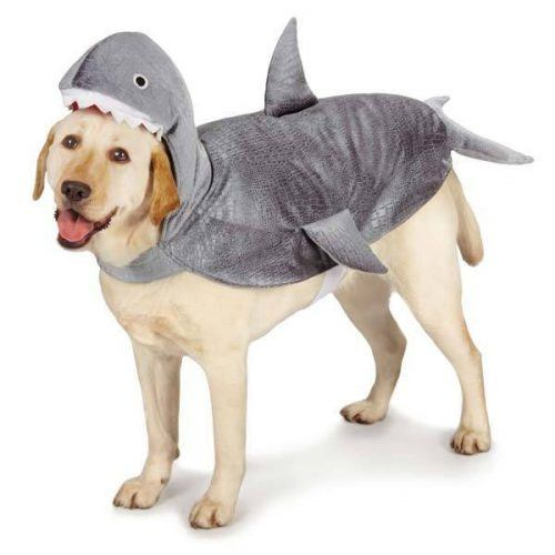 Dress-Up-as-other-animals-500x500 Funny Outfits for Dogs – 20 Most Funny Clothes for Dogs