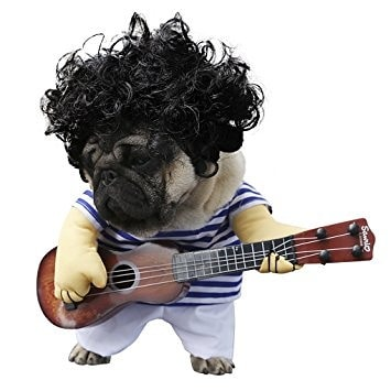 Your-Dogs-own-rock-band Funny Outfits for Dogs – 20 Most Funny Clothes for Dogs
