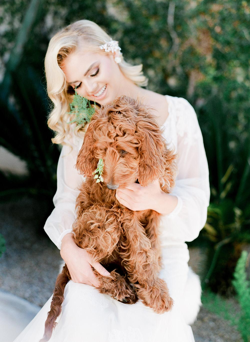 dog of honor goldendoodle pets in weddings