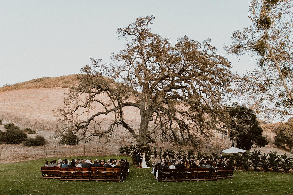 bohemian luxe vineyard wedding ceremony