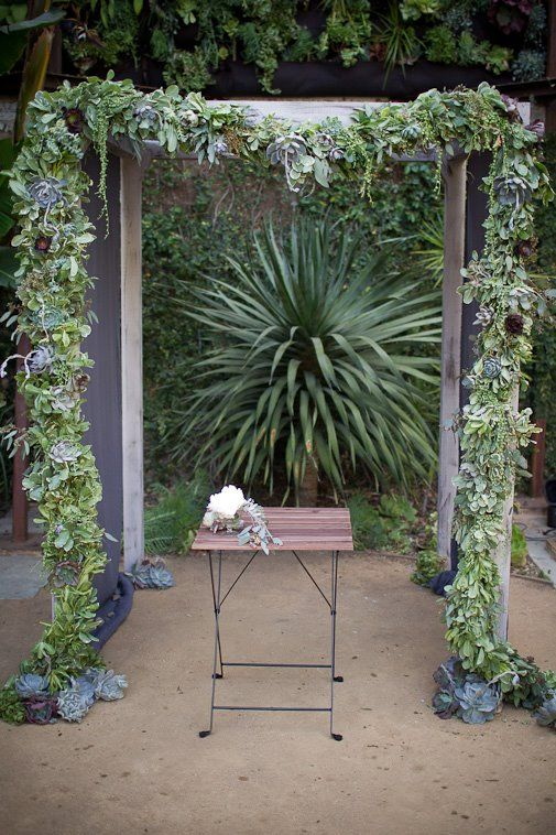 a wedding arch covered with various types of succulents is a creative idea