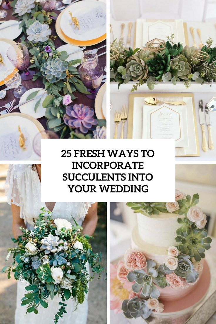 fresh ways to incorporate succulents into your wedding cover