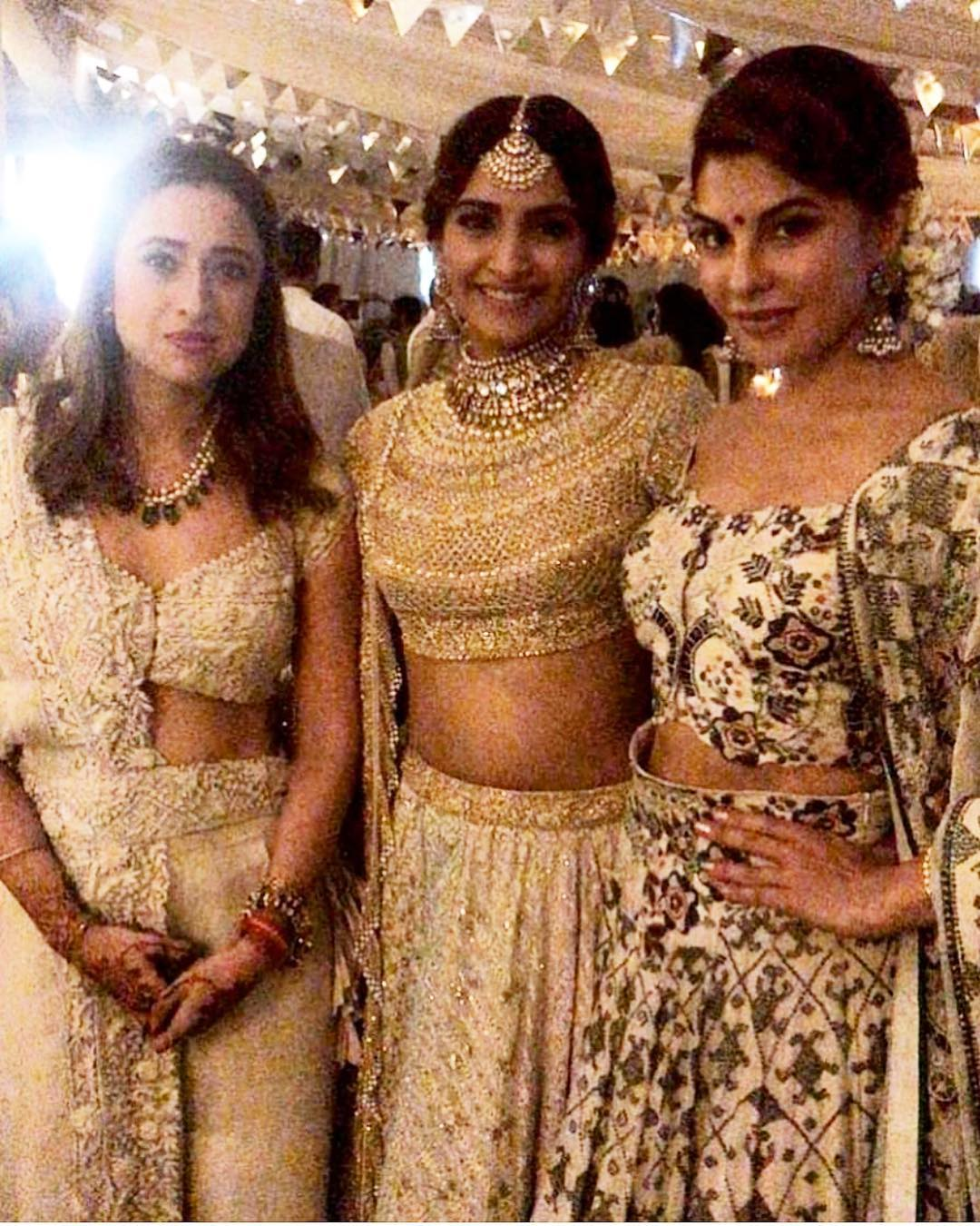 11-2 Sonam Kapoor Wedding Pics - Engagement and Complete Wedding Pictures