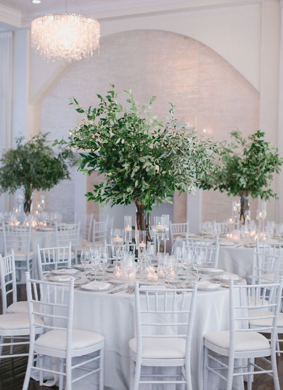 tall greenery centerpieces in clear glass vases, with olive branches and eucalyptus look very chic