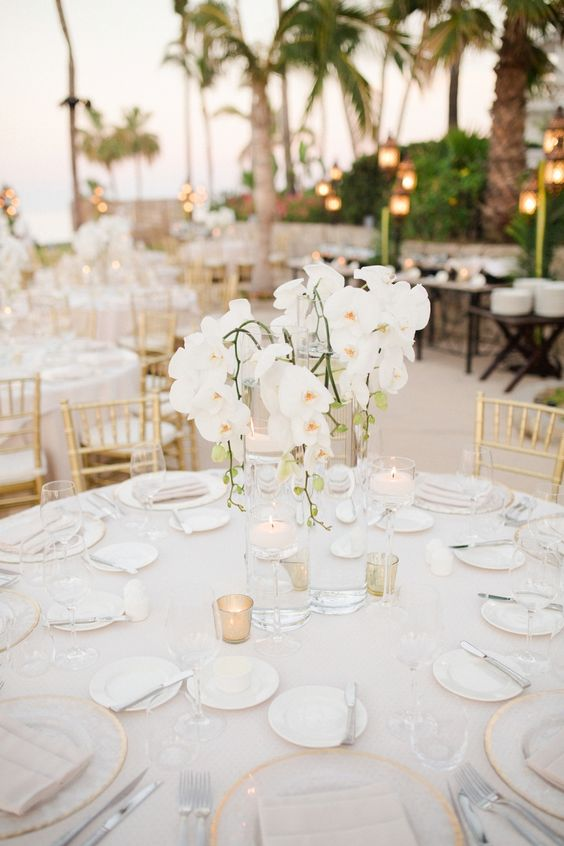 a glam tropical wedding centerpiece with white orchids is a chic idea