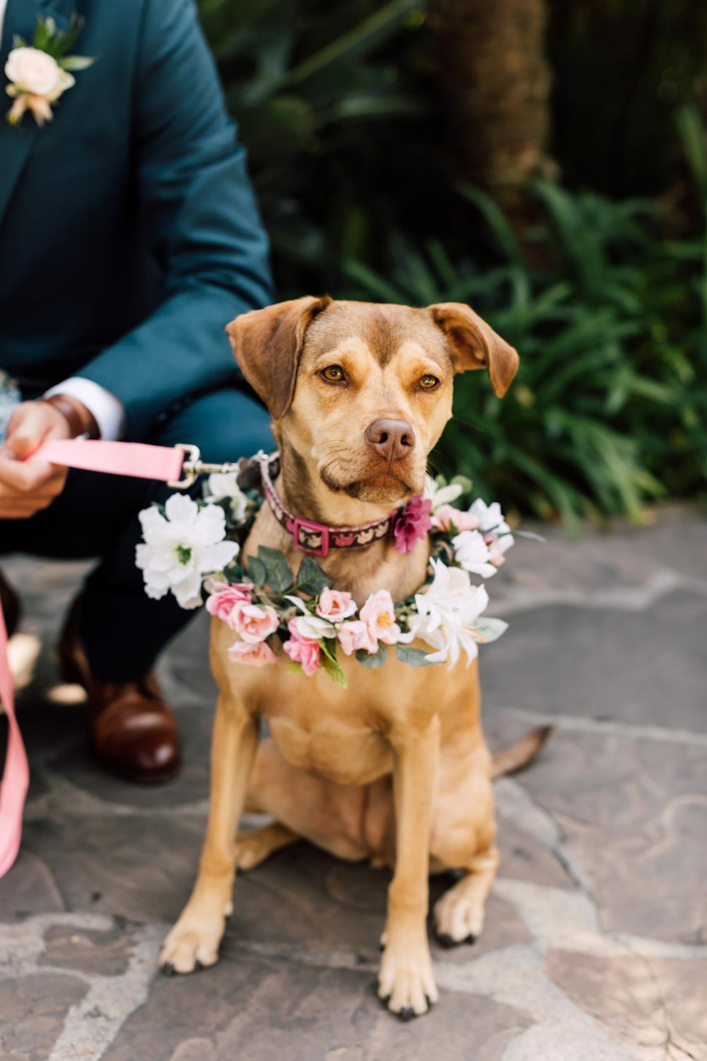 tropical floral wreath dog of honor
