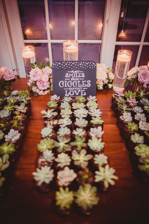 Wedding succulent favors- Dani Leigh Photography