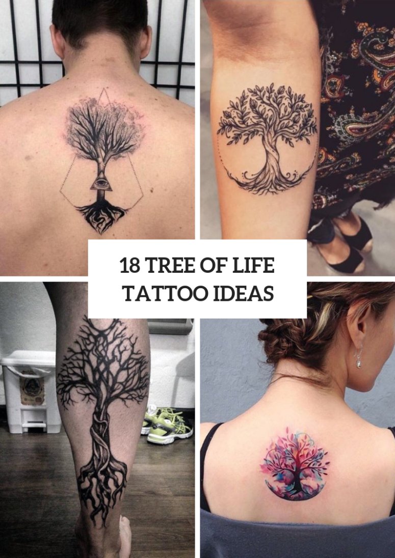 Tree Of Life Tattoos For Men And Women
